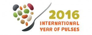 iyp_logo_spoon1